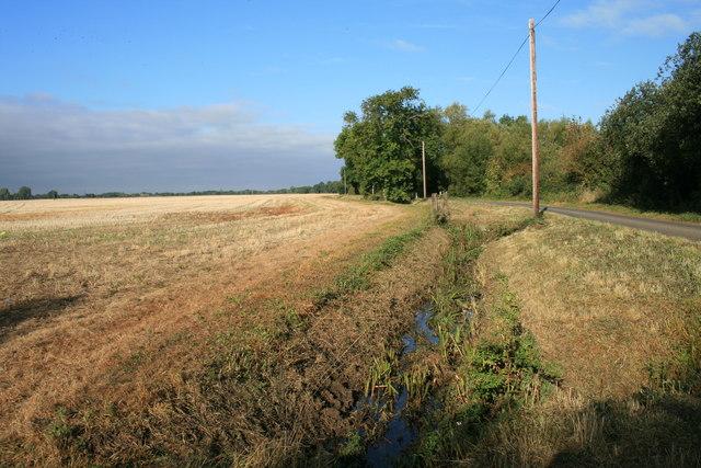 Ditch beside Calcroft lane