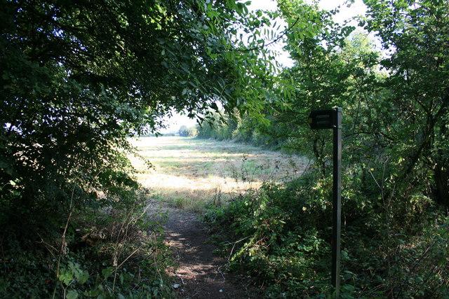 Footpath to Alvescot
