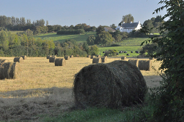 Hay bales off the Sully Road - between Sully and Dinas Powys