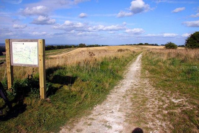 The Ridgeway above Wantage