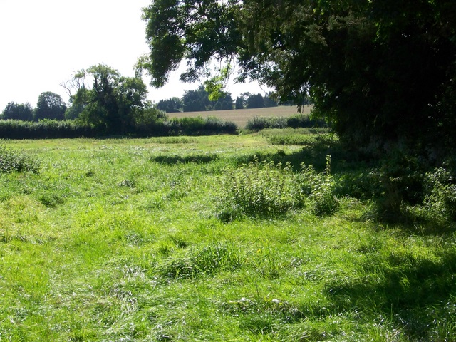 Bridleway, Winterborne Kingston