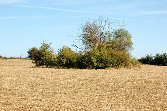 Valley Farm to Kites Hardwick bridleway (7)