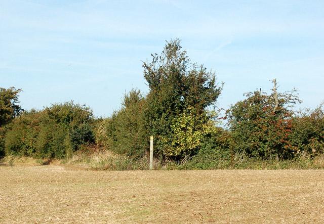 Valley Farm to Kites Hardwick bridleway (8)