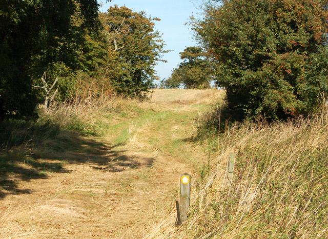 Valley Farm to Kites Hardwick bridleway (11)