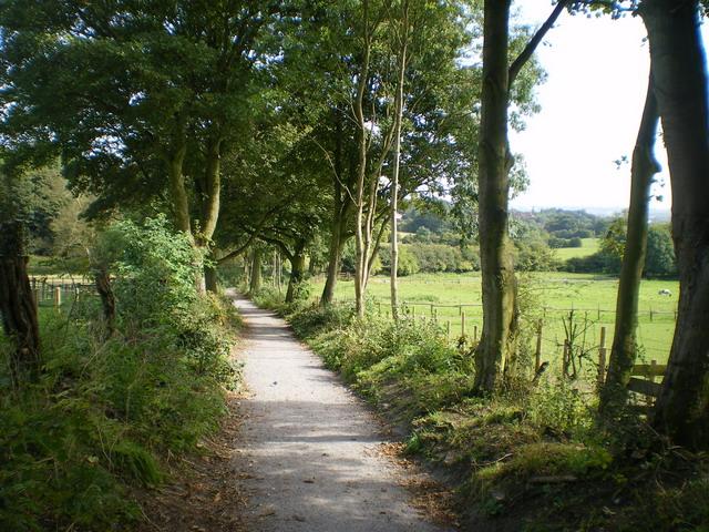 The Coppice bridleway, Turls Hill Road, Sedgley