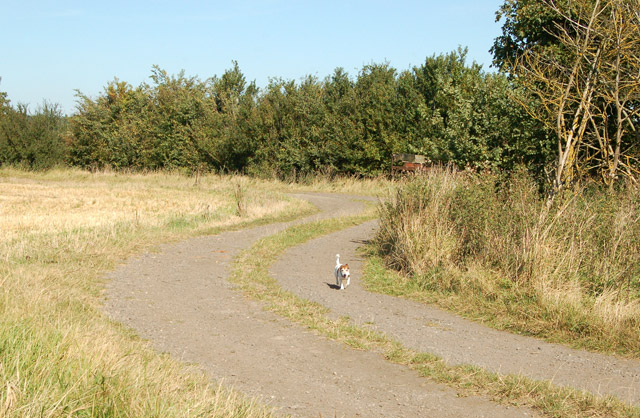 Footpath from Grandborough to Kites Hardwick (4)