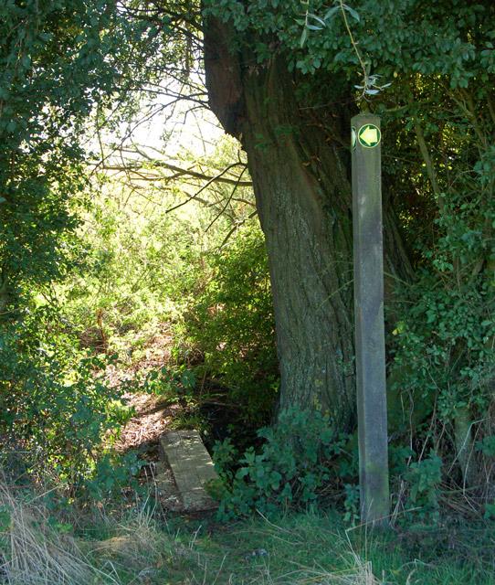 Footpath from Grandborough to Kites Hardwick (10