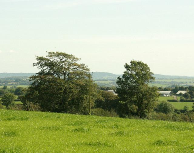 2009 : Pasture land near Windmill Farm