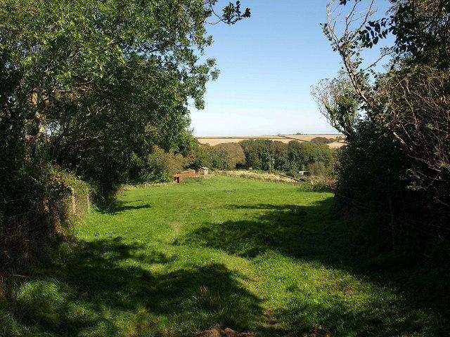 Field near Mattiscombe  Farm