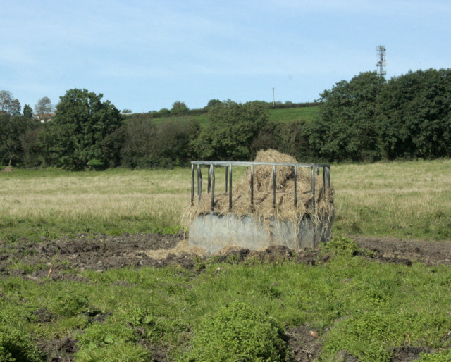 2009 : Cattle feeder off Burnthouse Drove