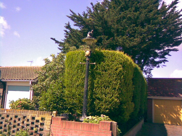 An old Victorian-style lamp post in a front garden (yet again!)
