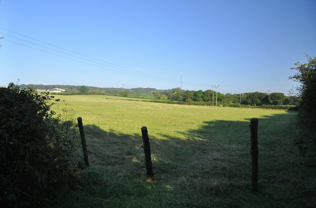 Pasture near St Andrews Major