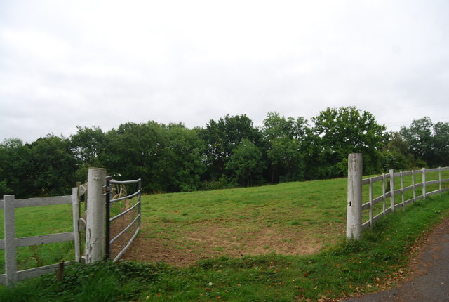 Gate into The Gallops, Knowles Bank