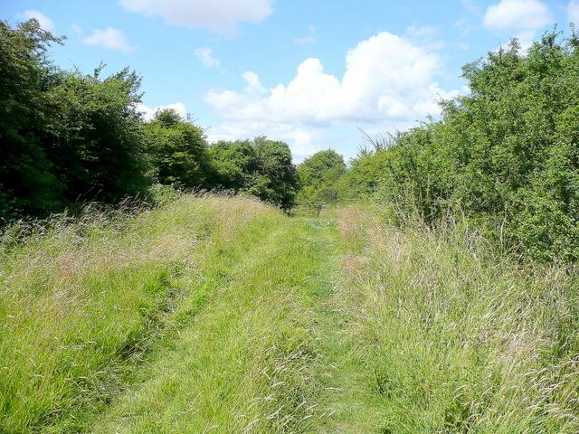 Bridleway to Northwick Warth