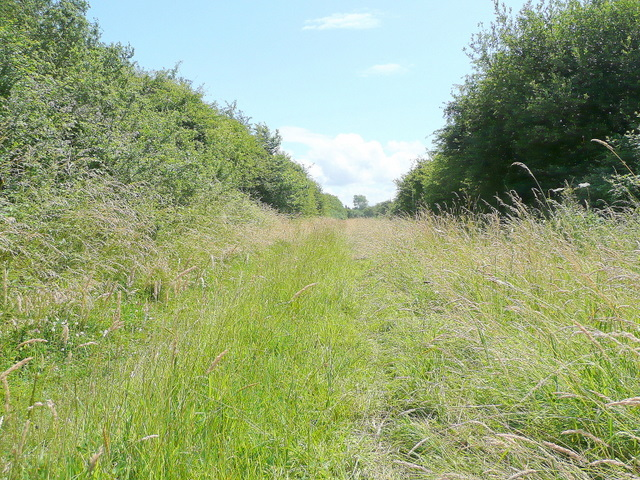 Bridleway from Northwick Warth