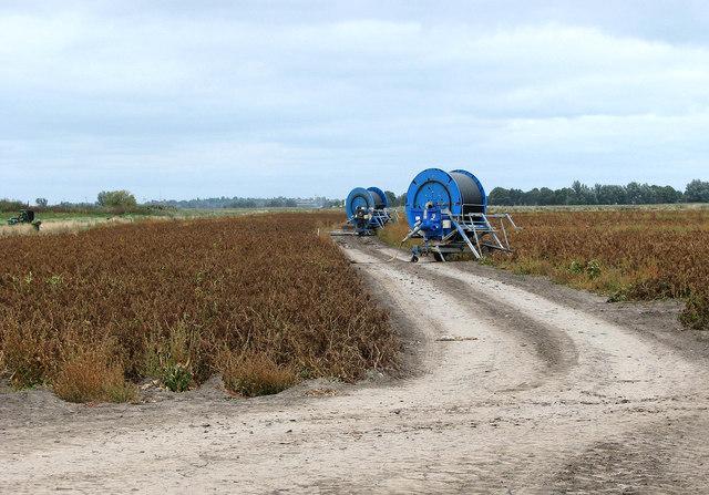 Irrigation equipment in potato field