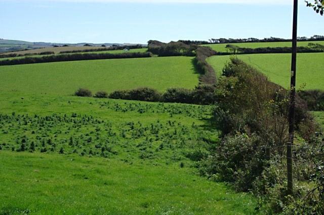 Pasture Land near Upton
