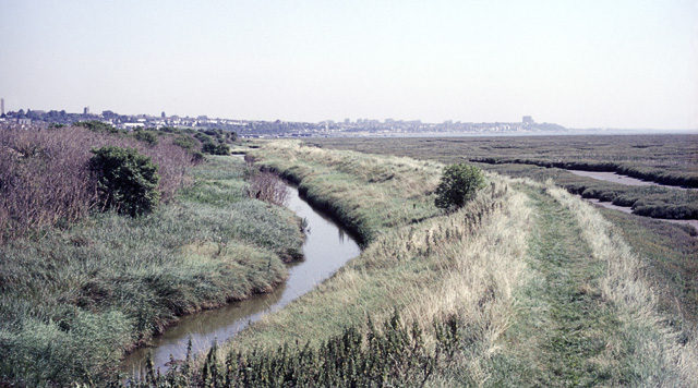 Two-Tree Island, Southern Sea Wall, 1987