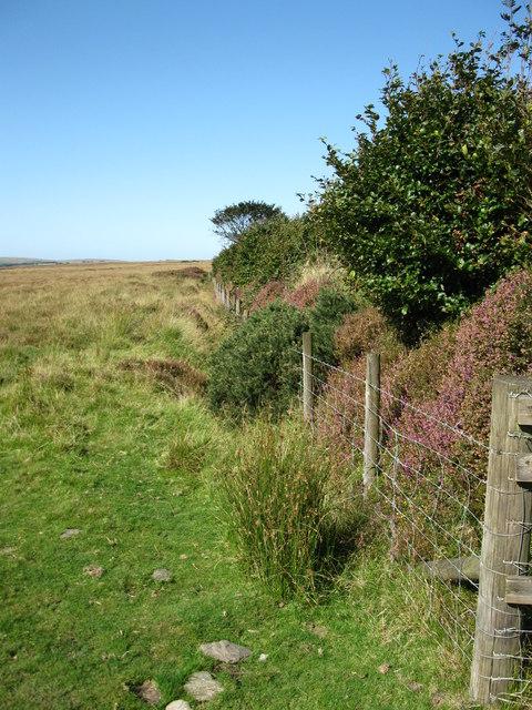 Access Land boundary