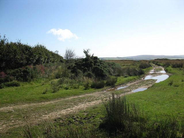 Track leading to Kitridge Lane