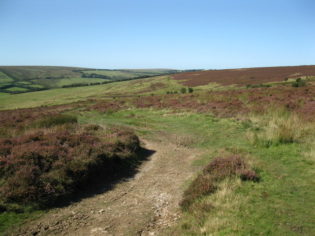 Two Moors Way near Landacre bridge