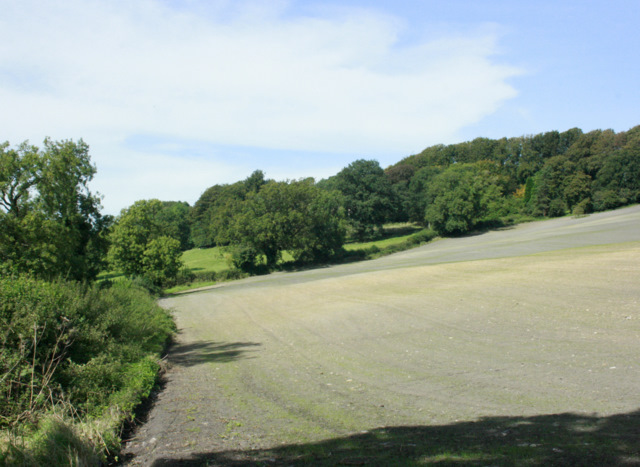 2009 : Freshly sown field near Nettlebridge