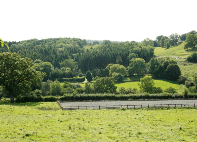 2009 : Valley south of Nettlebridge