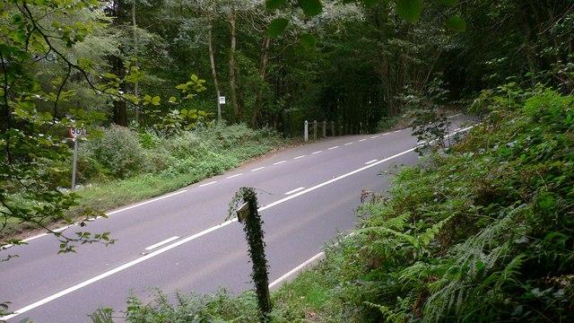 Footpath reaches A286 near Henley