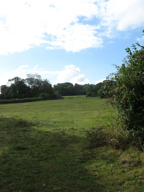 Lower House Field