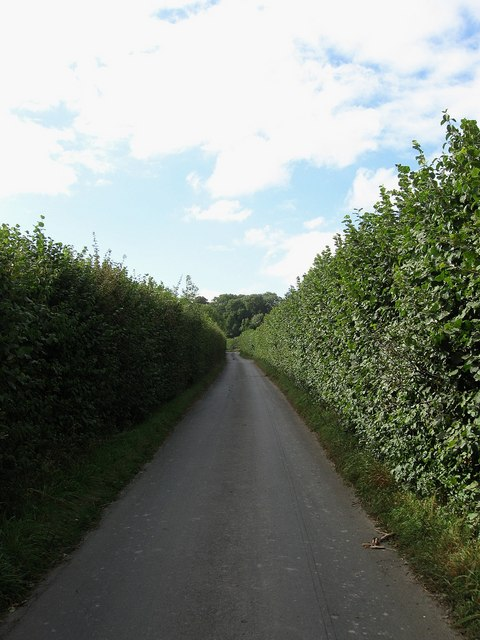 Streat Lane