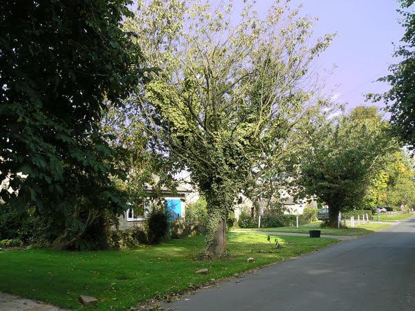 Finghall Village