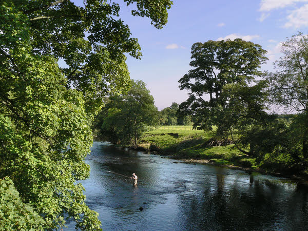 River Ure at Kilgram