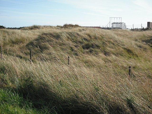 Dunes, Barry Links