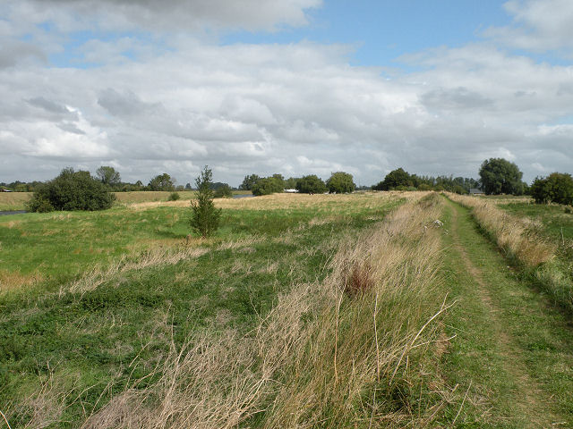 Fen Rivers Way and the Cam Washes