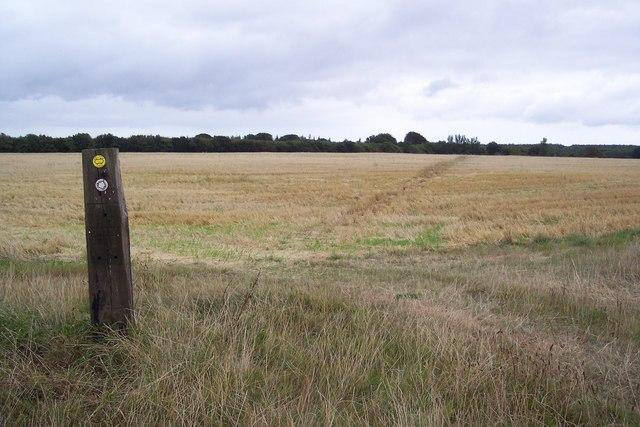 Footpath junction near Denge Wood