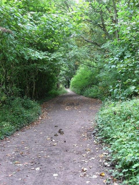 Bridleway near Middleton Manor