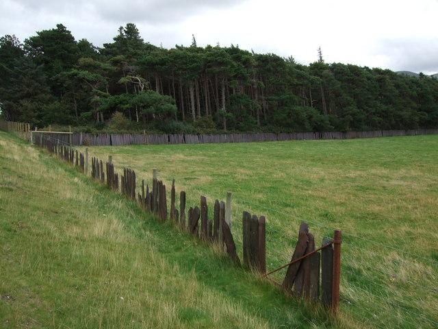 Slate fencing at Llanfairfechan