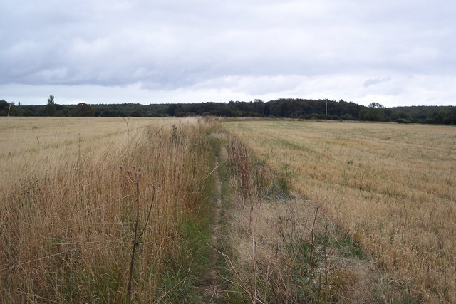 Bridleway to Upper Thruxted Farm