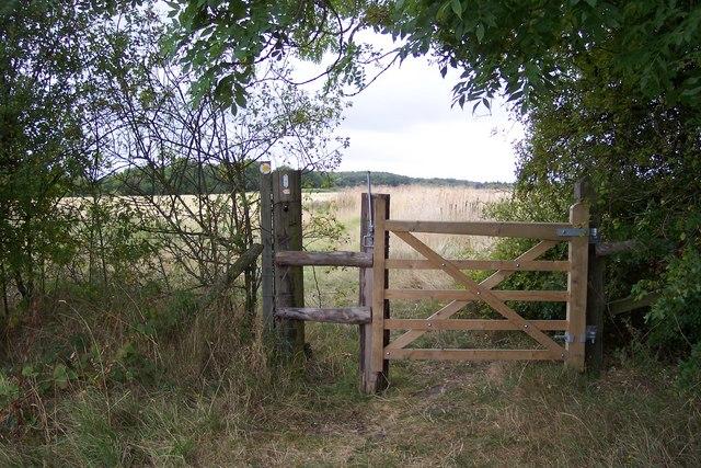 Footpath junction near Upper Thruxted Farm