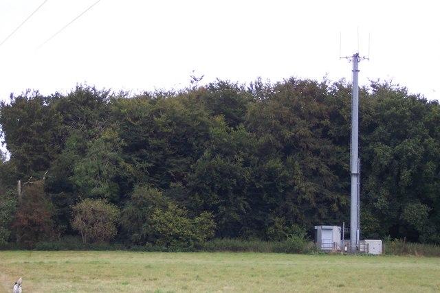 Mobile Mast near Upper Thruxted Farm
