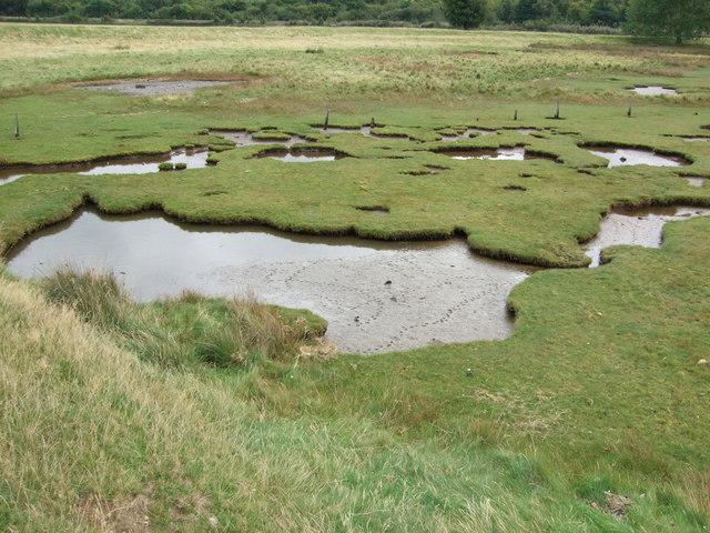 Muddy footprints at Glan y Mor Elias