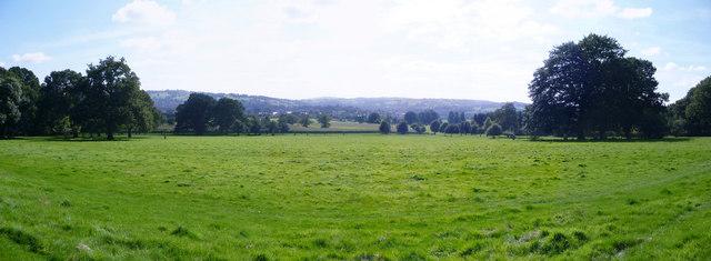 Mid Devon : Grassy Field & Trees