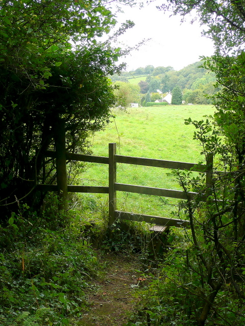 Stile on the forest edge
