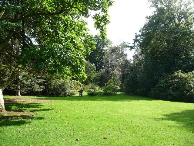 Mid Devon : Knightshayes Court, Cut Grass & Trees