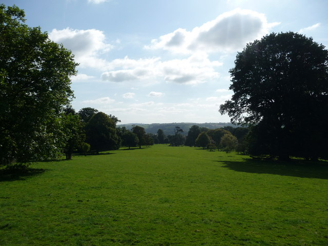 Mid Devon : Knightshayes Court, Grassy Field