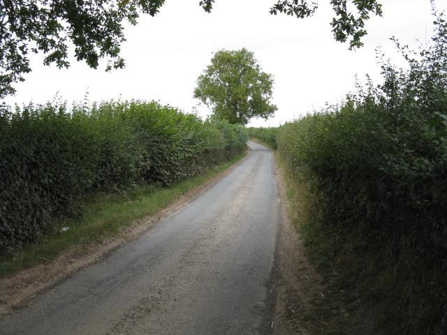 Lane Near Park Gate
