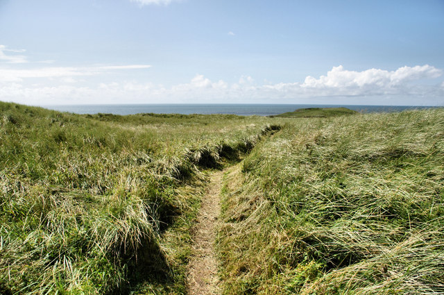 Footpath, Llangennith Burrows