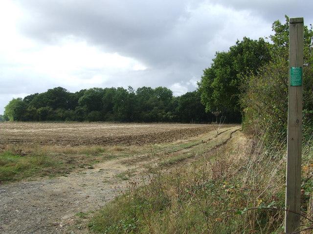 Footpath to Gosbeck Wood