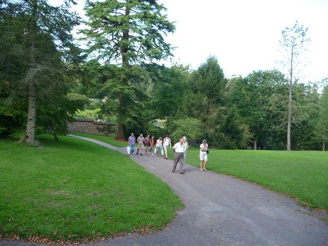 Mid Devon : Knightshayes Court, Path