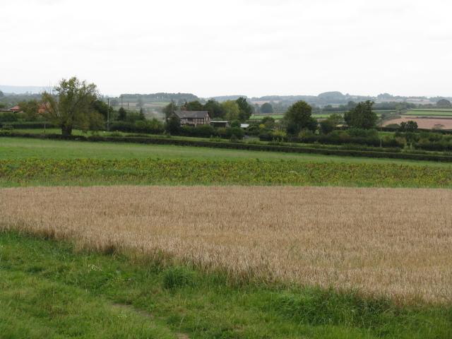 Stretford Across The Fields